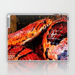Grunge Coiled Corn Snake Laptop & iPad Skin