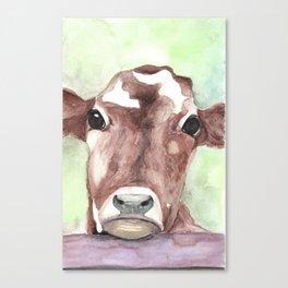 Cow portrait, farmhouse, country home, farm animal Canvas Print