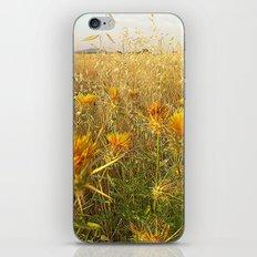 L´eté iPhone & iPod Skin