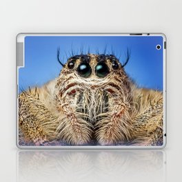 Jumping Spider Laptop & iPad Skin