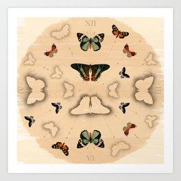 Butterfly Coordinates Art Print