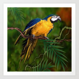 BLUE-GOLD MACAW PARROT IN JUNGLE Art Print