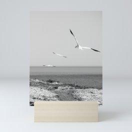 Fou de Bassan 1 Mini Art Print
