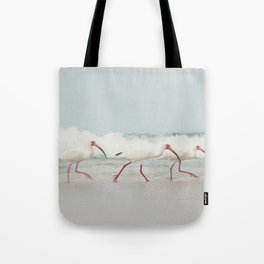 Three Little Ibis All in a Row Tote Bag
