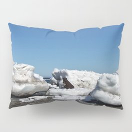 Icebergs and the big Dog Pillow Sham