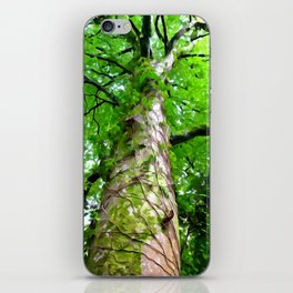 The Tree iPhone Skin