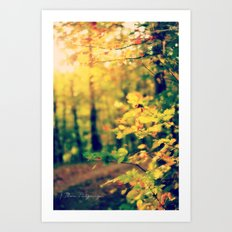 Sunshine on my Shoulders Art Print