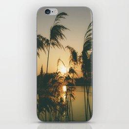 One-Eyed Octopus Photography iPhone Skin