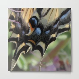Detail of a Swallowtail Metal Print