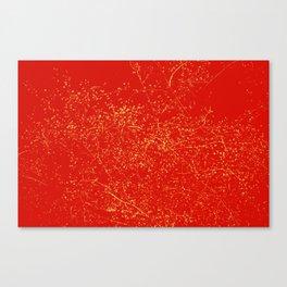 120 Canvas Print