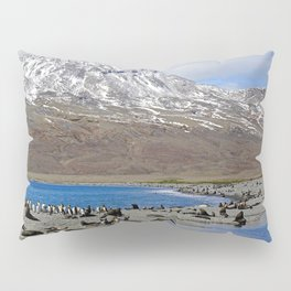Fur Seals on the Beach Pillow Sham