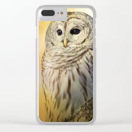 Bathed in light Clear iPhone Case