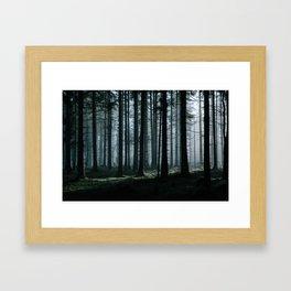 Mystery forest Framed Art Print