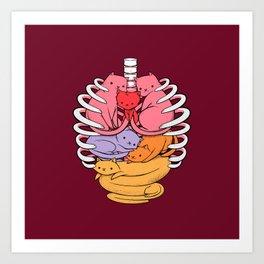 Anatomicat Art Print