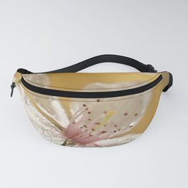 Cherry Blossoms Water Droplets Fanny Pack