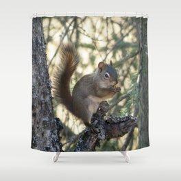 Soldotna Red Squirrel Shower Curtain