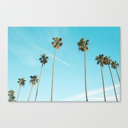 Palm Tree Sunshine Canvas Print