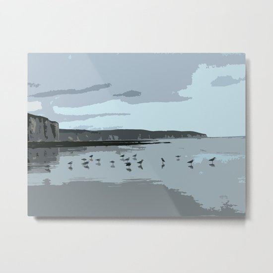 seagulls Metal Print