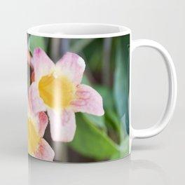 Tangerine Beauty Cross Vine - Three Plus One Coffee Mug