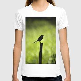 Way of Saint James T-shirt