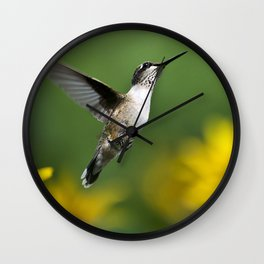 Hummingbird VIII Wall Clock