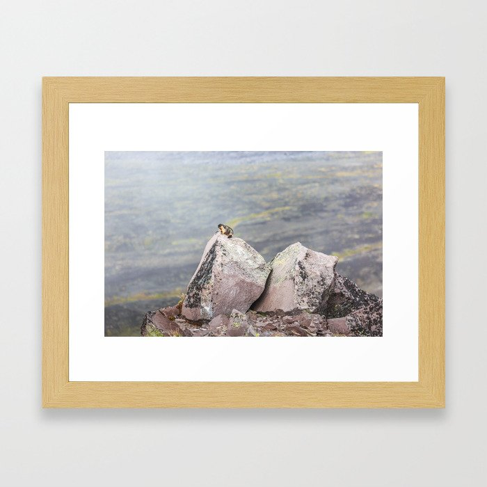 Extremal Groundhog  or King of the Mountain Framed Art Print