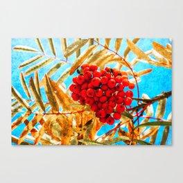 Ashberry Canvas Print