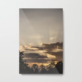 Glorious Metal Print