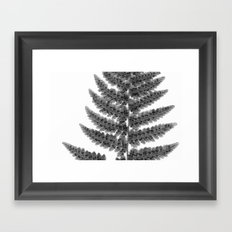 Fern Frond Framed Art Print