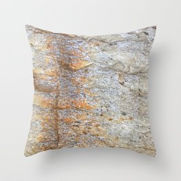 Rocky Rust Divide // Rock Formation Textured Background Accent Decoration Throw Pillow
