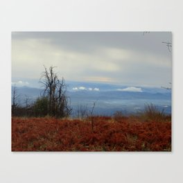 Red and Blue Mountaintop Canvas Print