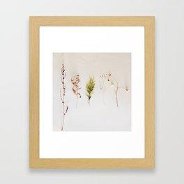 COLLECTABLES Framed Art Print