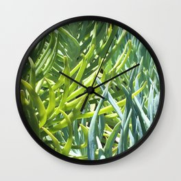 Suculents Wall Clock