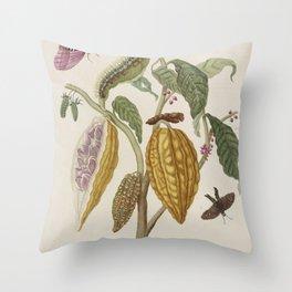 Maria Sibylla Merian Fruits Cocoa Throw Pillow