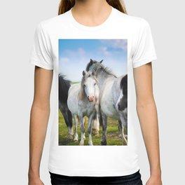 Horses Horses 4 T-shirt