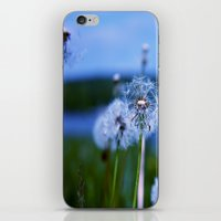weed iPhone & iPod Skins featuring Weed by Libby Rose
