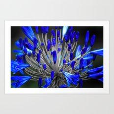 Selective blue Art Print
