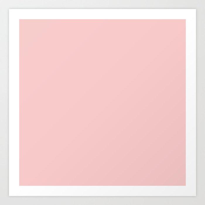 Millennial Pink Neapolitan Rose Quartz Blush Solid Matte Colour