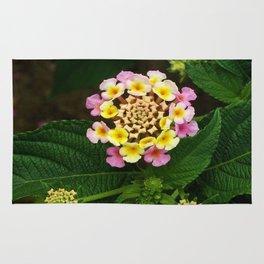 Fresh Lantana Flower Against Leaf Background Rug