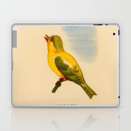 Cute Canary Painting Laptop & iPad Skin