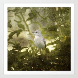 Bird in a Bush Art Print