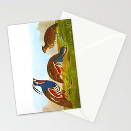 Plumed Partridge and Thick-legged Partridge Stationery Cards