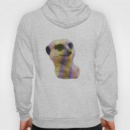 Abstract Meerkat #1 Hoody