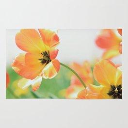Bright Orange Tulips in Sunlight Rug