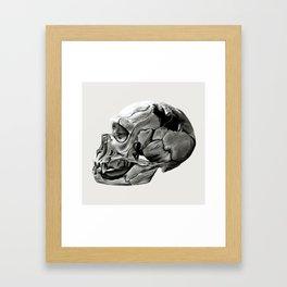 Neanderthal Skull Framed Art Print