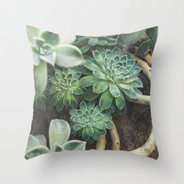 Botanical Gardens - Succulent #625 Throw Pillow