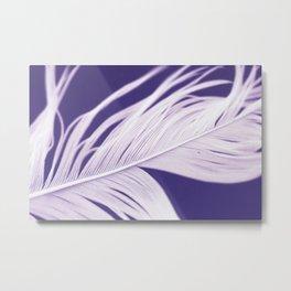 Purple feather Metal Print