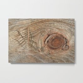 Wood with knot Metal Print