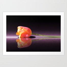 Tulip Reflection Art Print