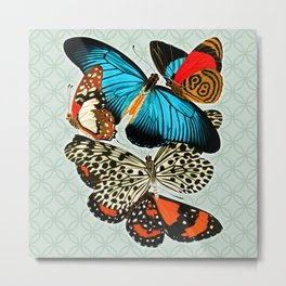 Butterfly collage No1 Metal Print